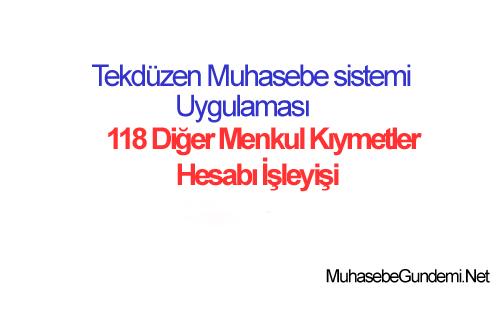 118-diger-menkul-kıymetler